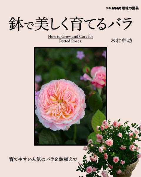 【本】鉢で美しく育てるバラ (別冊NHK趣味の園芸) ★送料無料 代引不可/日時指定不可