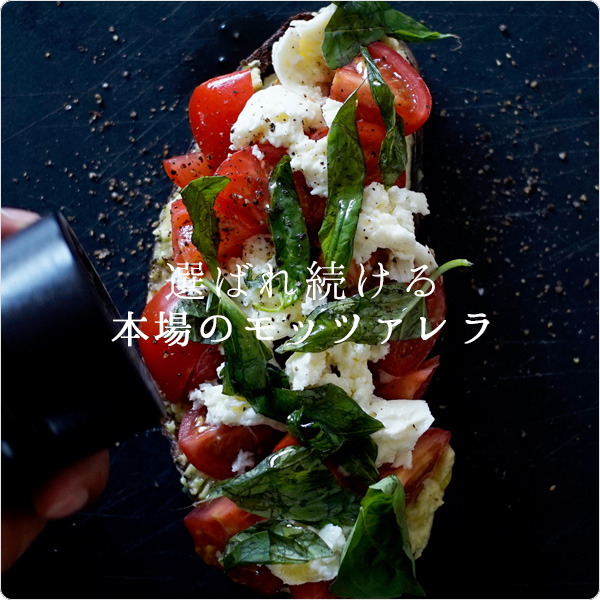 【冷蔵】 モッツァレッラ 100g  フレッシュ イタリア 空輸 チーズ