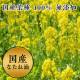 ベジタブル餃子(通常価格1,620円)
