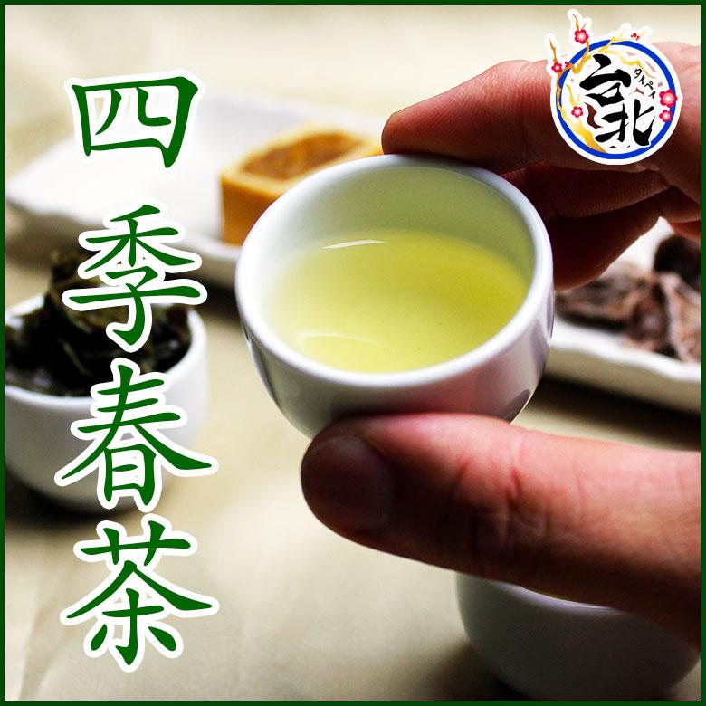 【送料無料】四季春茶(メール便発送)(ティーパック@2g×20個入り)