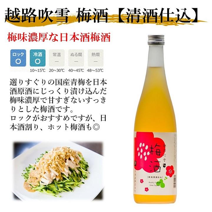 梅酒 越路吹雪 日本酒仕込み 720ml×6本 (1ケース) 新潟 高野酒造