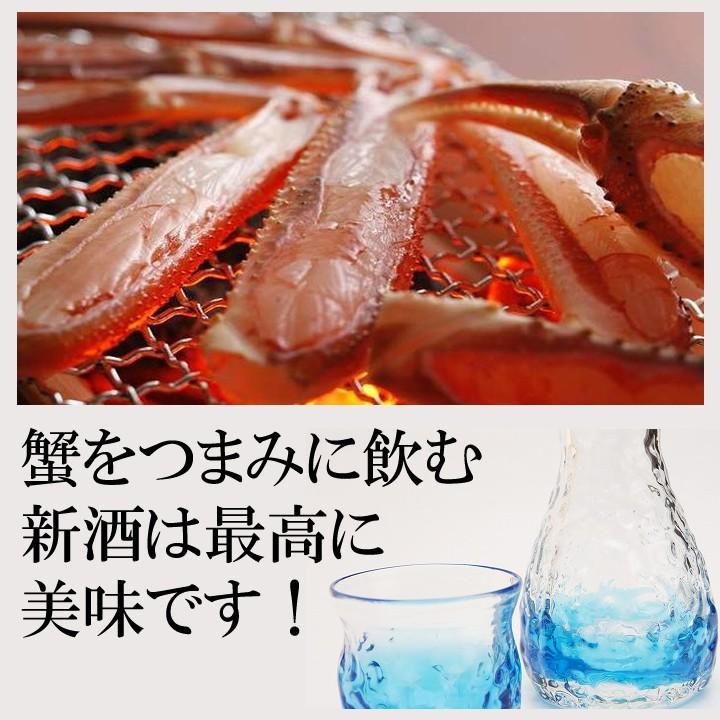 【冬季限定】新酒しぼりたて 越路吹雪 入り 日本酒 飲み比べセット 720ml×2本 新潟 高野酒造