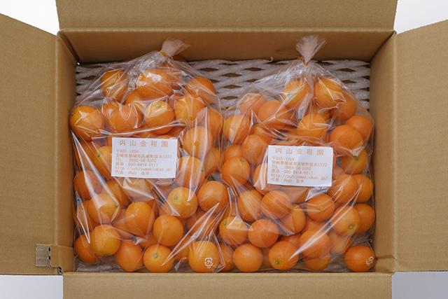 送料無料 内山金柑園の完熟きんかん2kg 宮崎県産完熟きんかん 内山金柑園