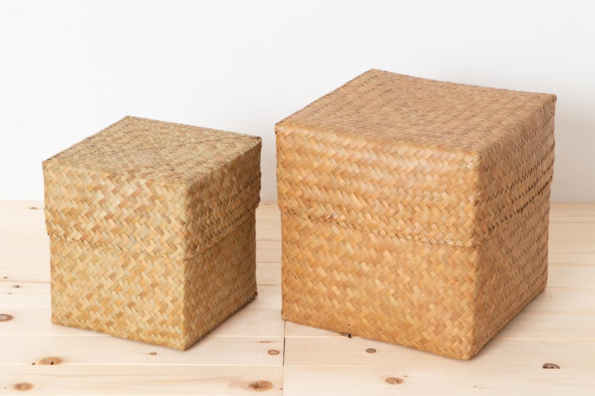 タイ/カチュー(水草) 整理かご 蓋付き キューブ M・L 2サイズ