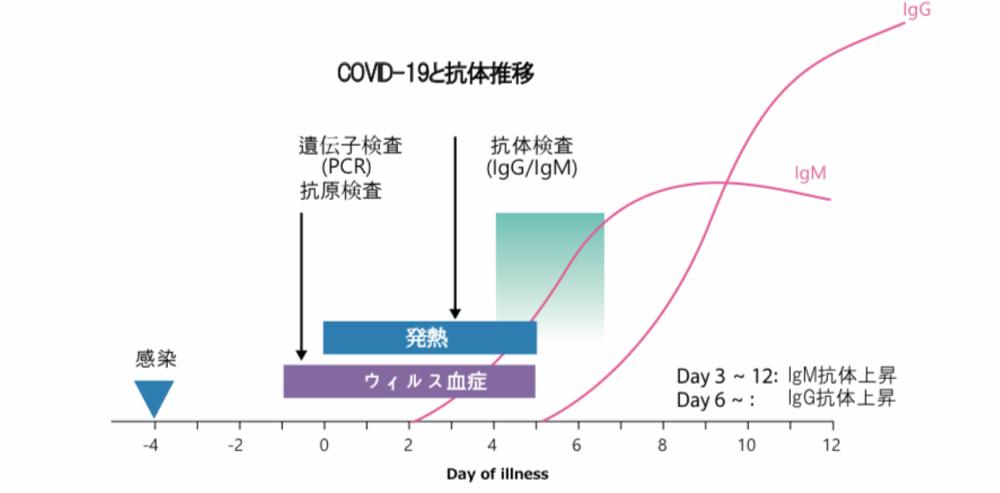 【10キット】コロナウイルス抗原検査キット(1キットあたり4,200円)※平日12時までの決済で即日出荷