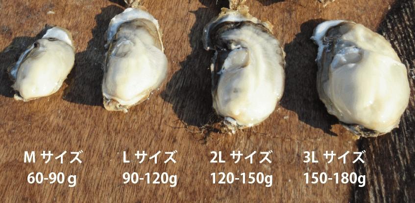 北海道 最高級厚岸産生牡蠣 3Lサイズ【20個入】