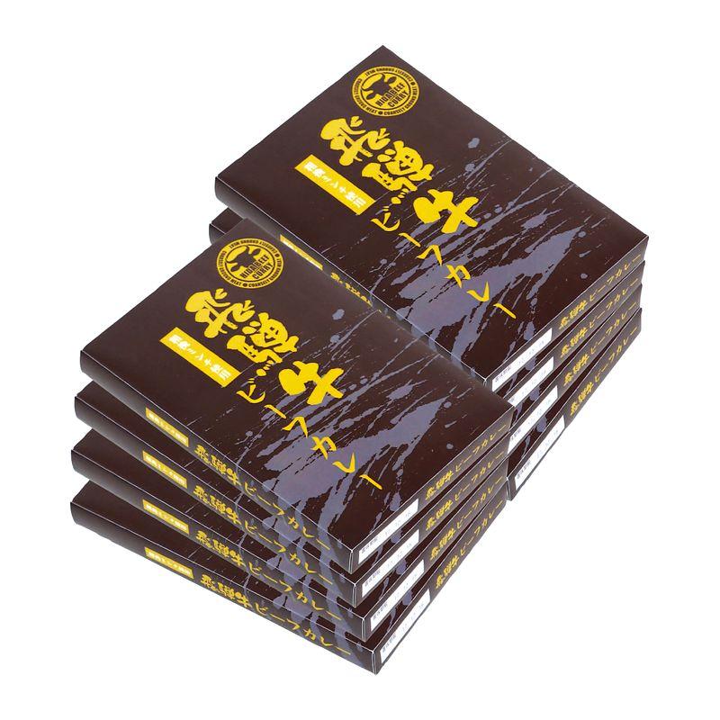飛騨牛ビーフカレー 8個入  (送料無料)