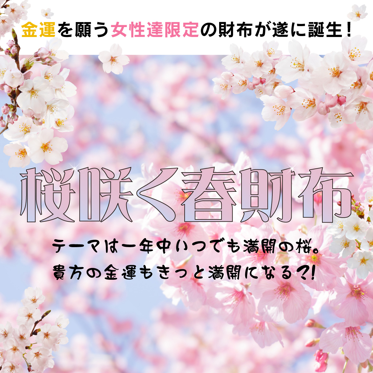 桜咲く春財布 ≫全体運の向上