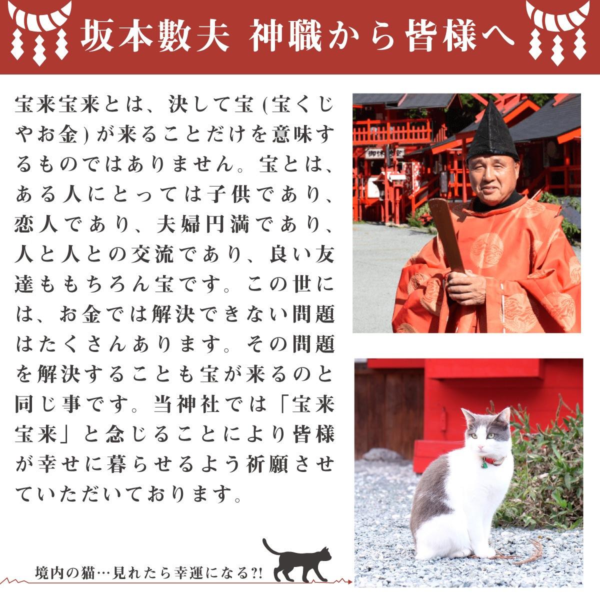 宝来宝来神社特別祈願 『当銭くじ猫』