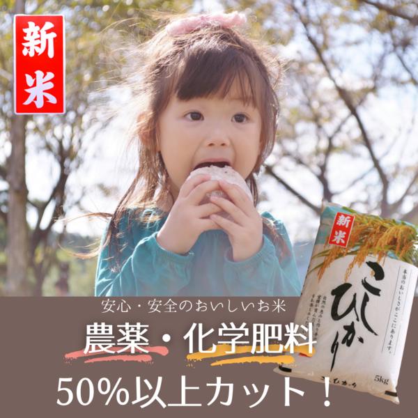 【 新 米 】【タナカ農産35周年記念新米セール】令和3年産 農薬・化学肥料50%以上カット コシヒカリ 白米 5kg