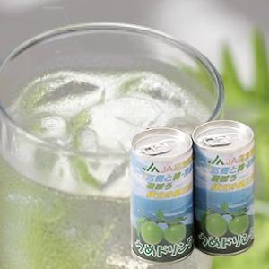 すっきりとした甘さと梅の酸味でどなたでも飲みやすい「梅ドリンク」 195g×30本