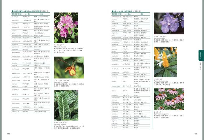 最新 園芸・植物用語集