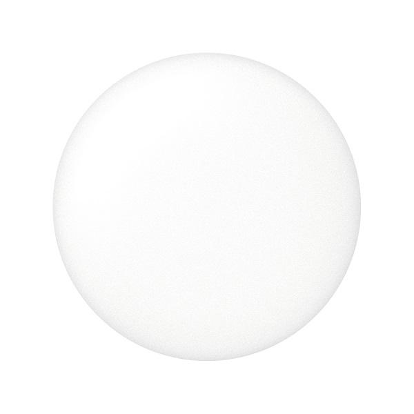 PAUL & JOE ボディプライマー サンタン ≪2021年5月1日新商品≫