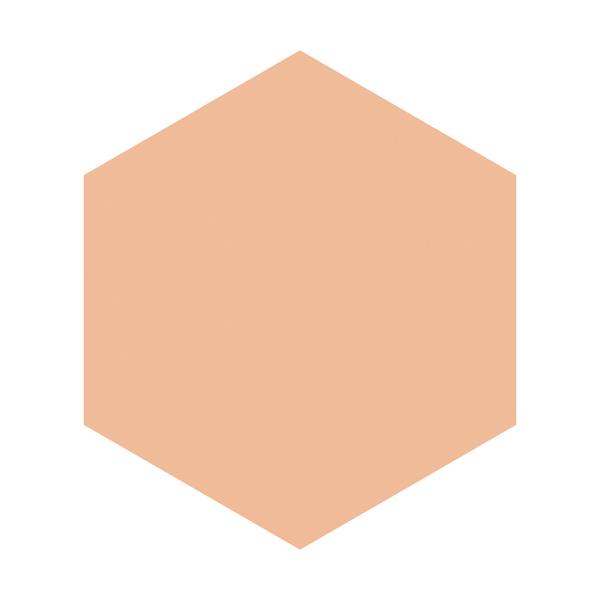 INTEGRATE GRACY ホワイトパクトEX オークル10 (レフィル)