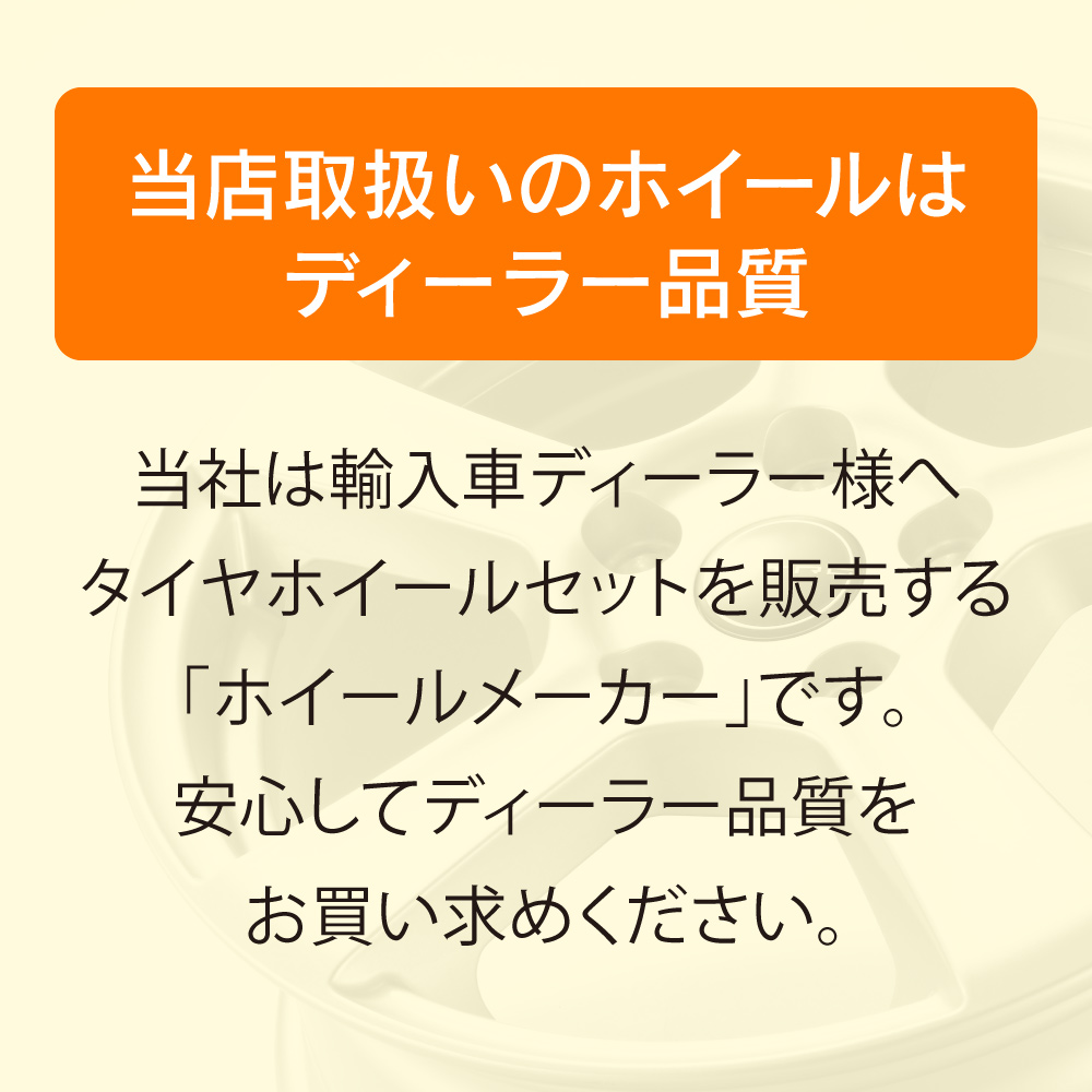 15インチ Aセット ダンロップ WinterMaxx01 ポロ(6R/6C)用 スタッドレスタイヤ&TECMAGホイールセット【1セットのみ限定!】