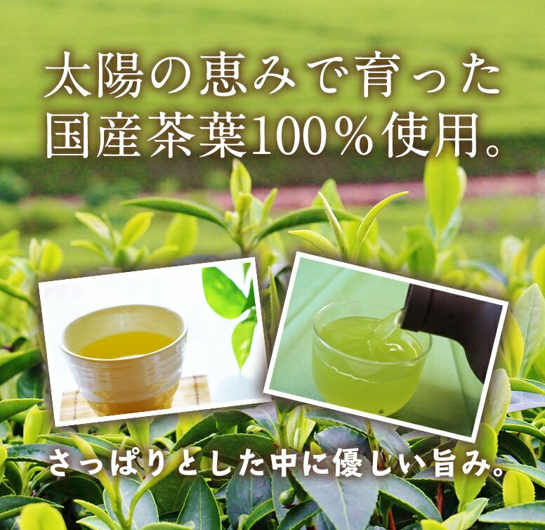 抹茶入緑茶ティーバッグ(急須・水出し両用)5g×42パック