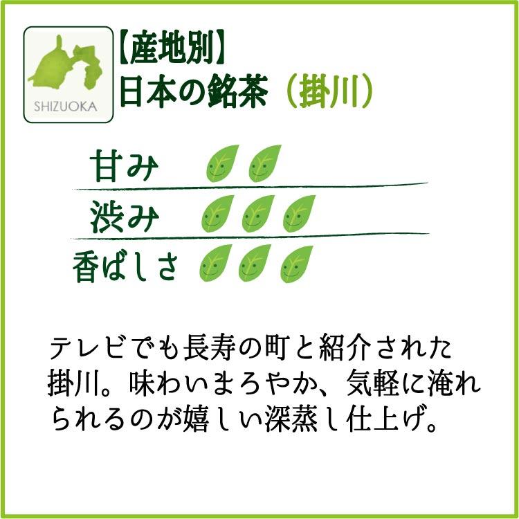 人気の茶産地の煎茶100gを3袋セット。