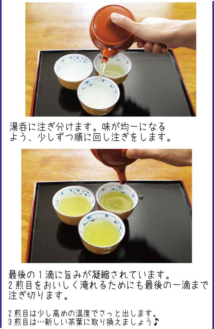 【濃口】抹茶入り白折(しらおれ)紫 120g