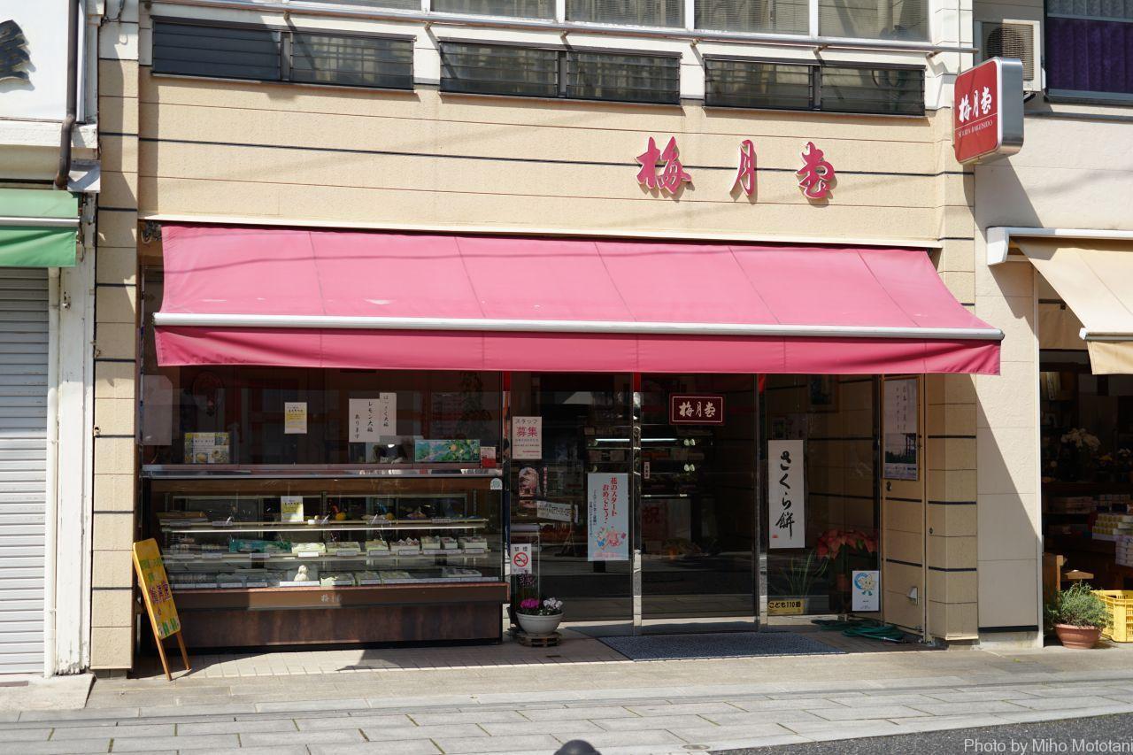 瀬戸田レモンケーキ20個入り