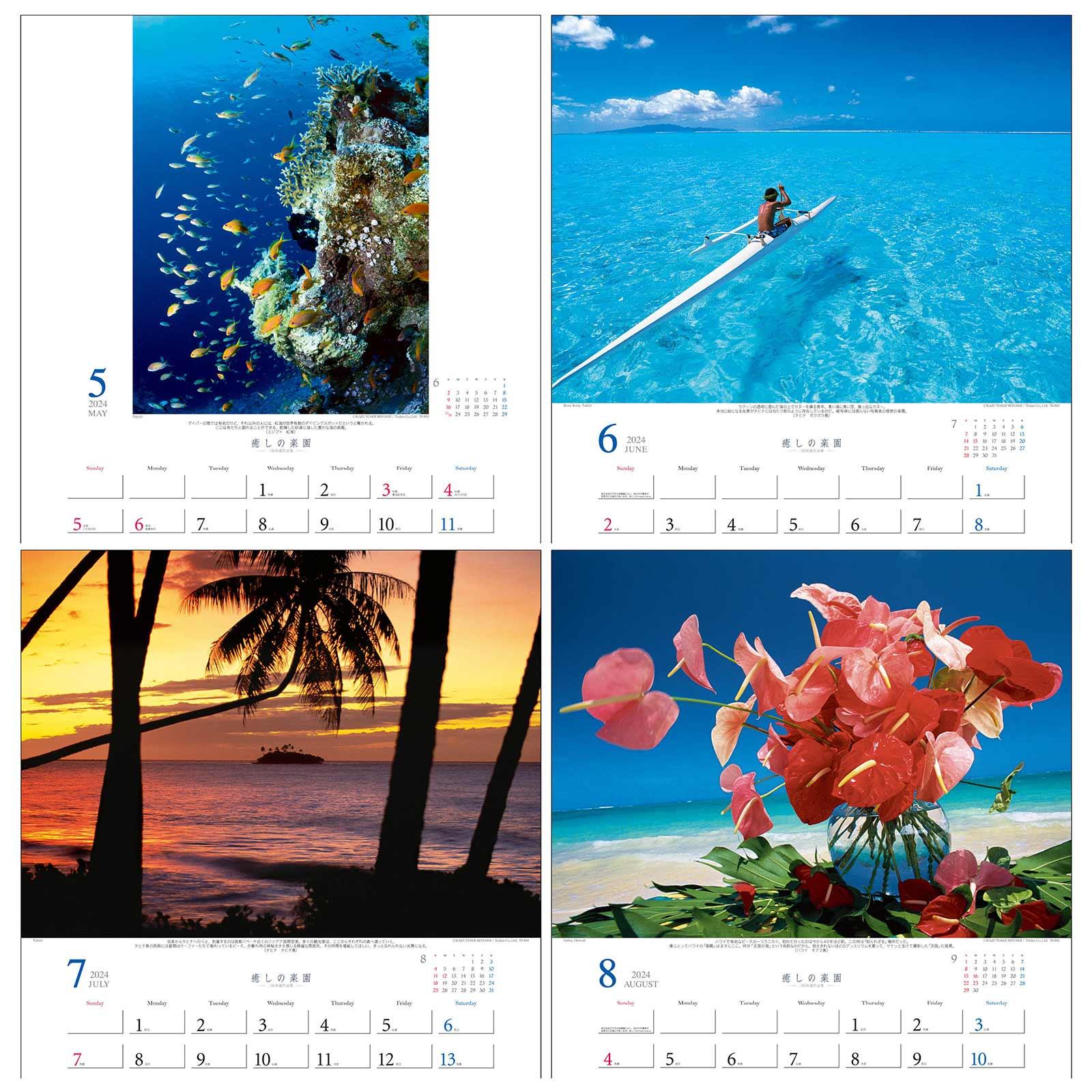 TD-30653 癒しの楽園〜三好和義作品集〜(2021年版)
