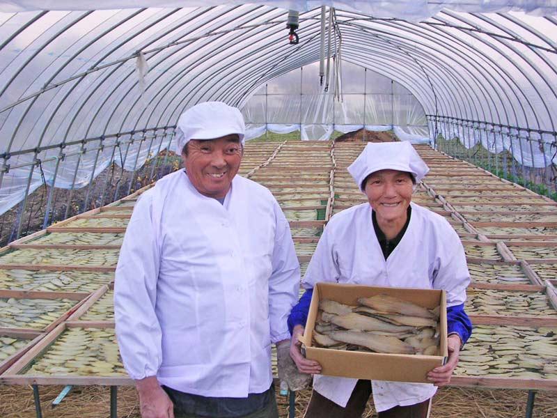 ほしいも三ッ星生産者圷農園の減農薬栽培さつまいも使用「ほしいもせんべい《無添加》4パック」【送料込】