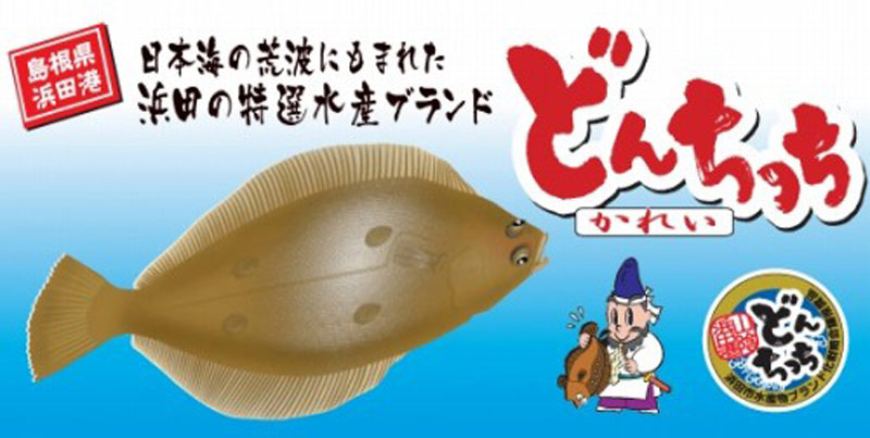 笹カレイ干物5尾セット【送料込】