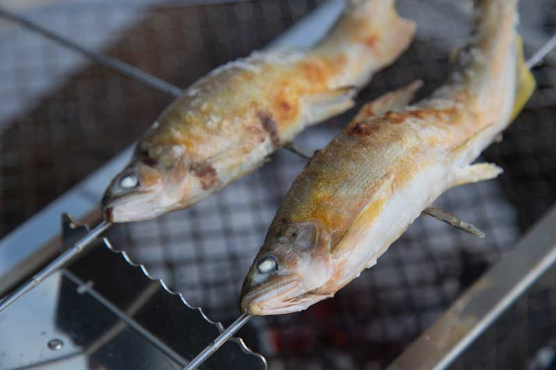 三重県宮川の特大鮎 6匹セット(690g相当)【送料込】