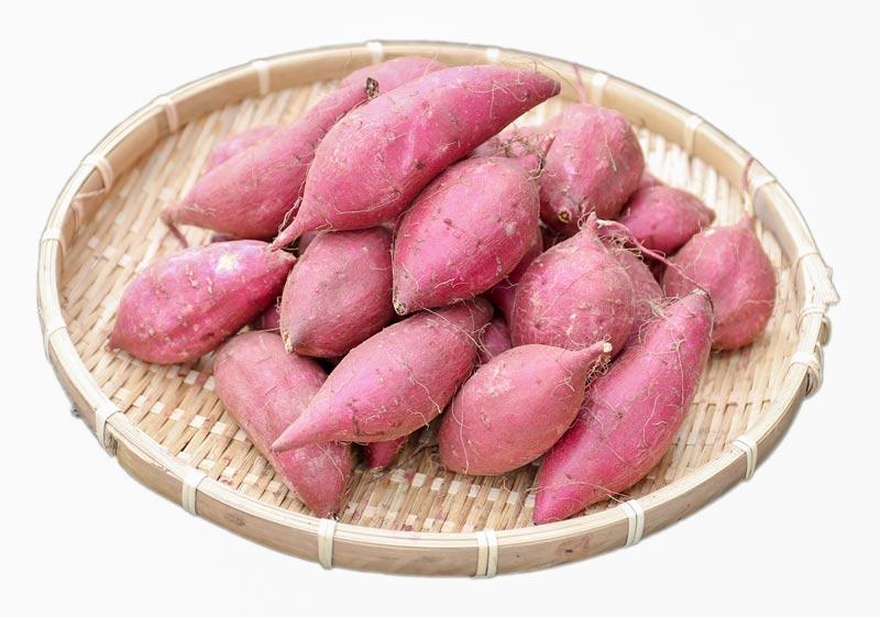 サツマイモ シルクスイート5kg【送料込】