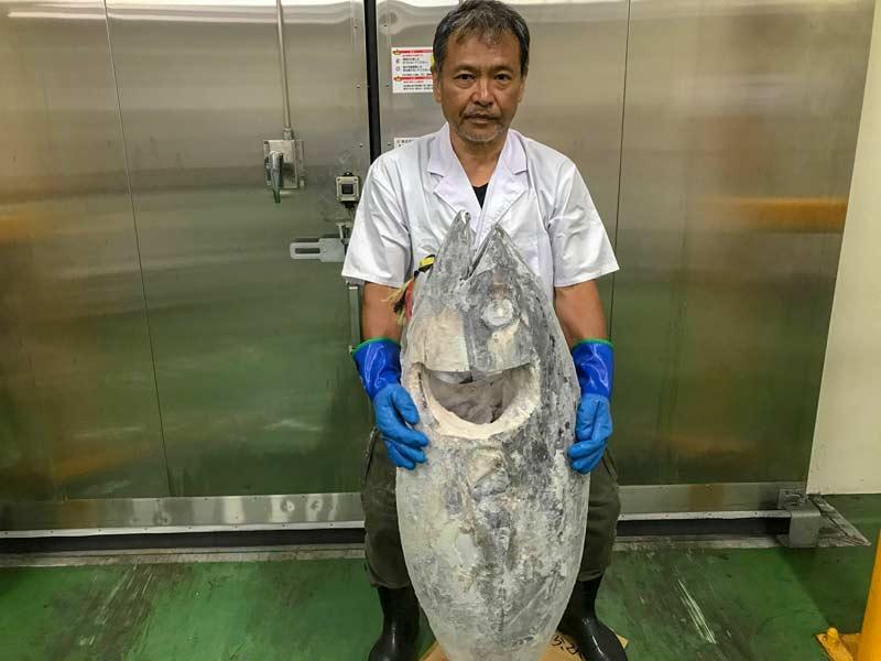 紀伊長島のまぐろのネギトロ大容量1kg