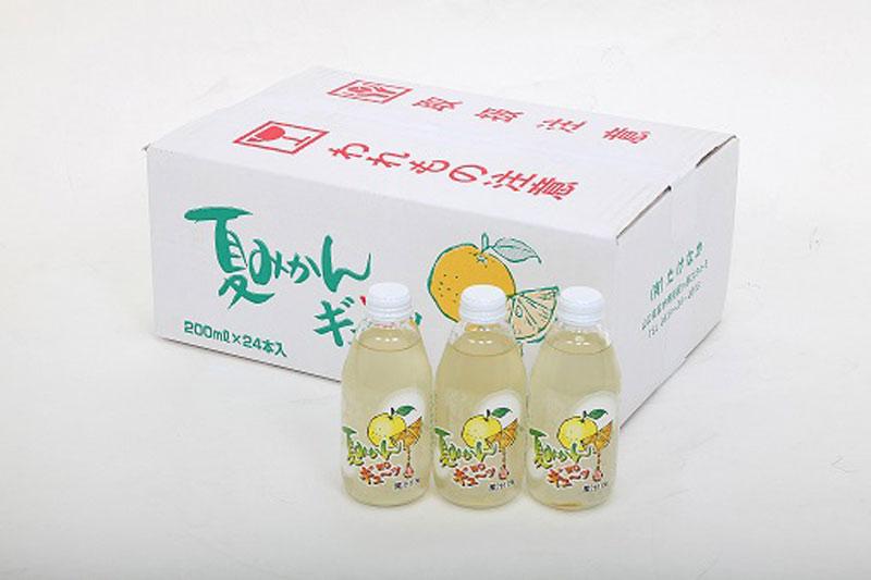 夏みかんwoギュ~ッ24本入り【送料込】