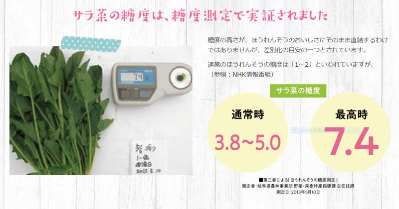 サラ菜(ほうれん草)180g×10袋【送料込】