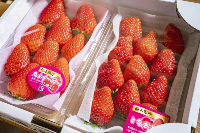 遠井農園 スカイベリー(2パック)&とちおとめ(2パック)食べ比べセットB【送料込】