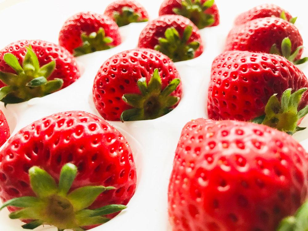 よつぼし なかはた農園の特選イチゴ