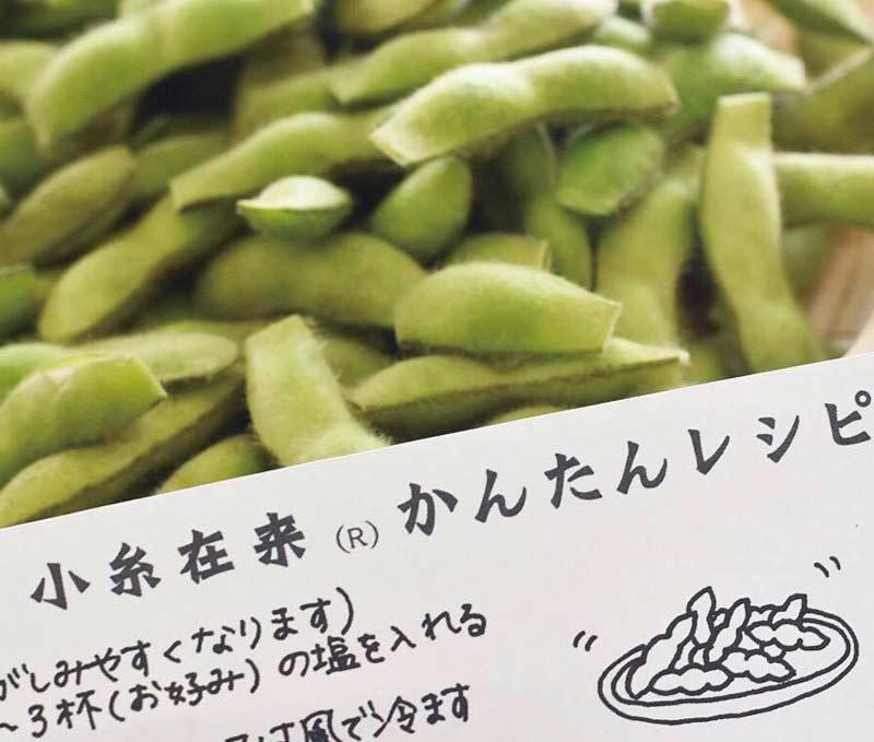 小糸在来(R) 枝豆 5kg【送料込】