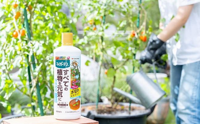 【肥料】 マイガーデン液体肥料 650ml 水切れ安心!保水性をプラス!