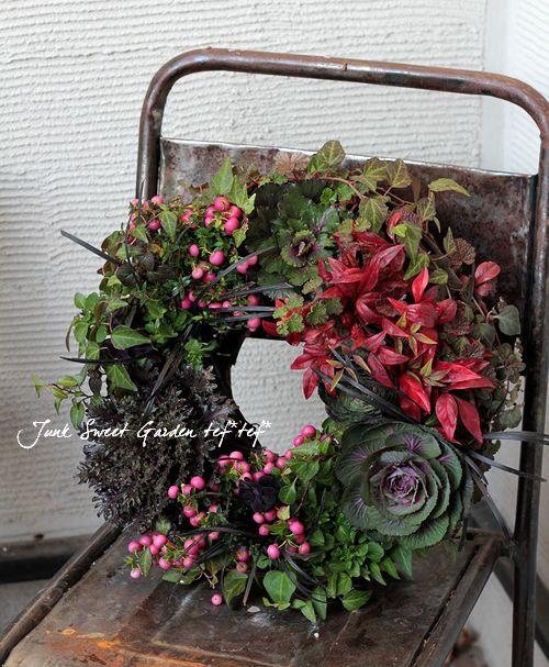 <i>Brassica</i><BR><BR>黒いカップ咲き葉牡丹!<BR>ブラックルシアン『ベルサイユ』
