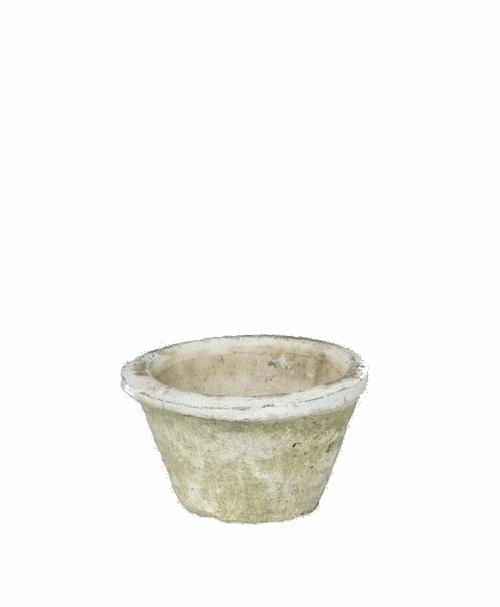 アンティーク・ホワイト モスポット 10cm