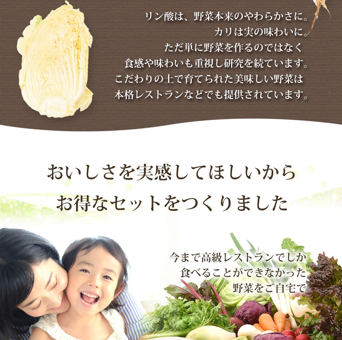箱根南麓の伊豆の野菜セット15品目(機能性野菜を中心とした旬の野菜)伊豆メディカル農園