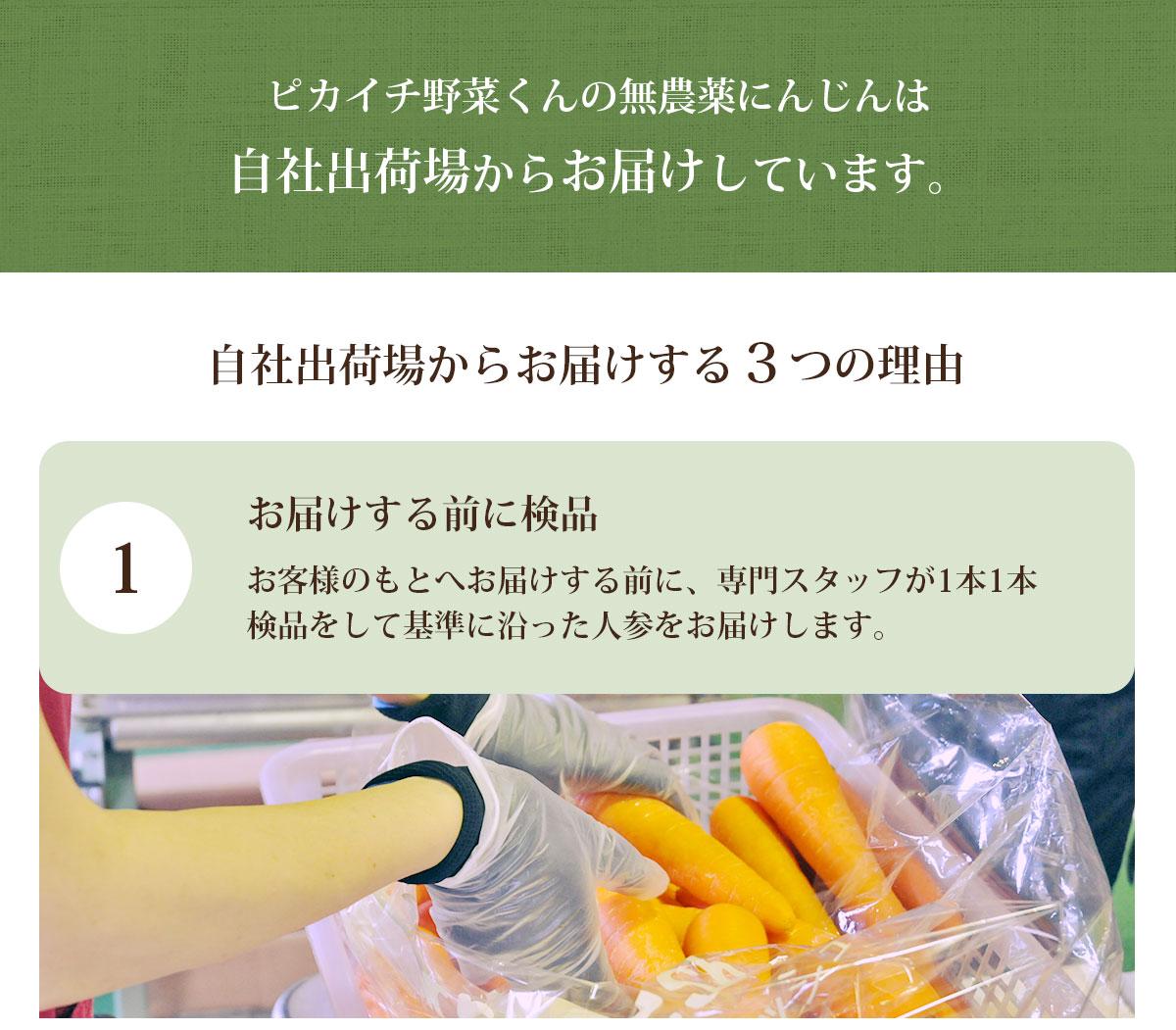 正品 無農薬人参 10kg A品 ギフト用 ジュース用 農薬・化学肥料不使用栽培 ゲルソン療法