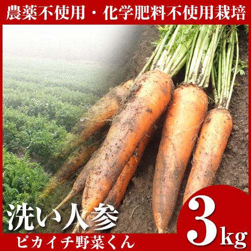 無農薬にんじん 3kg 訳あり B品 規格外 国産 農薬・化学肥料不使用栽培 人参ジュース ゲルソン療法 生酵素