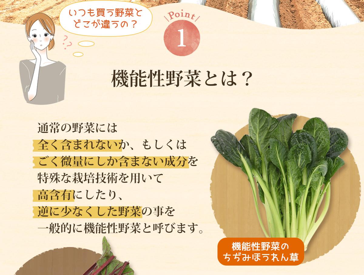 箱根南麓の伊豆の野菜お試しセット 9品目(機能性野菜を中心とした旬の野菜 8品目・イタリア野菜 1品目 ) 伊豆メディカル農園