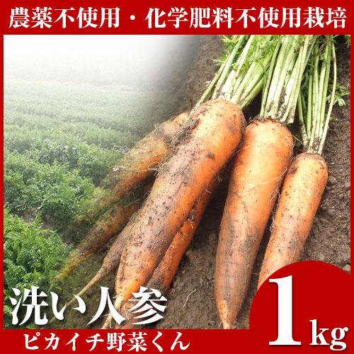 無農薬にんじん 1kg 訳あり B品 規格外 国産 農薬・化学肥料不使用栽培 人参ジュース ゲルソン療法 生酵素