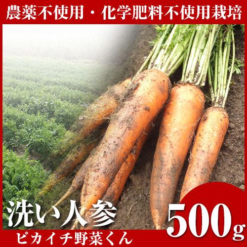 無農薬にんじん 500kg 訳あり B品 規格外 国産 農薬・化学肥料不使用栽培 人参ジュース ゲルソン療法 生酵素