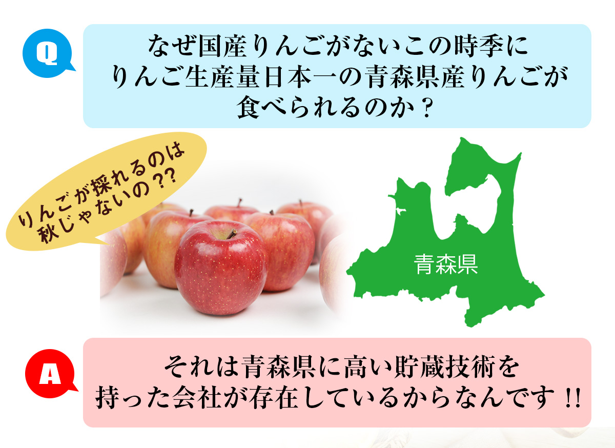【国産りんご】 訳あり 青森県産りんご 3kg 慣行栽培