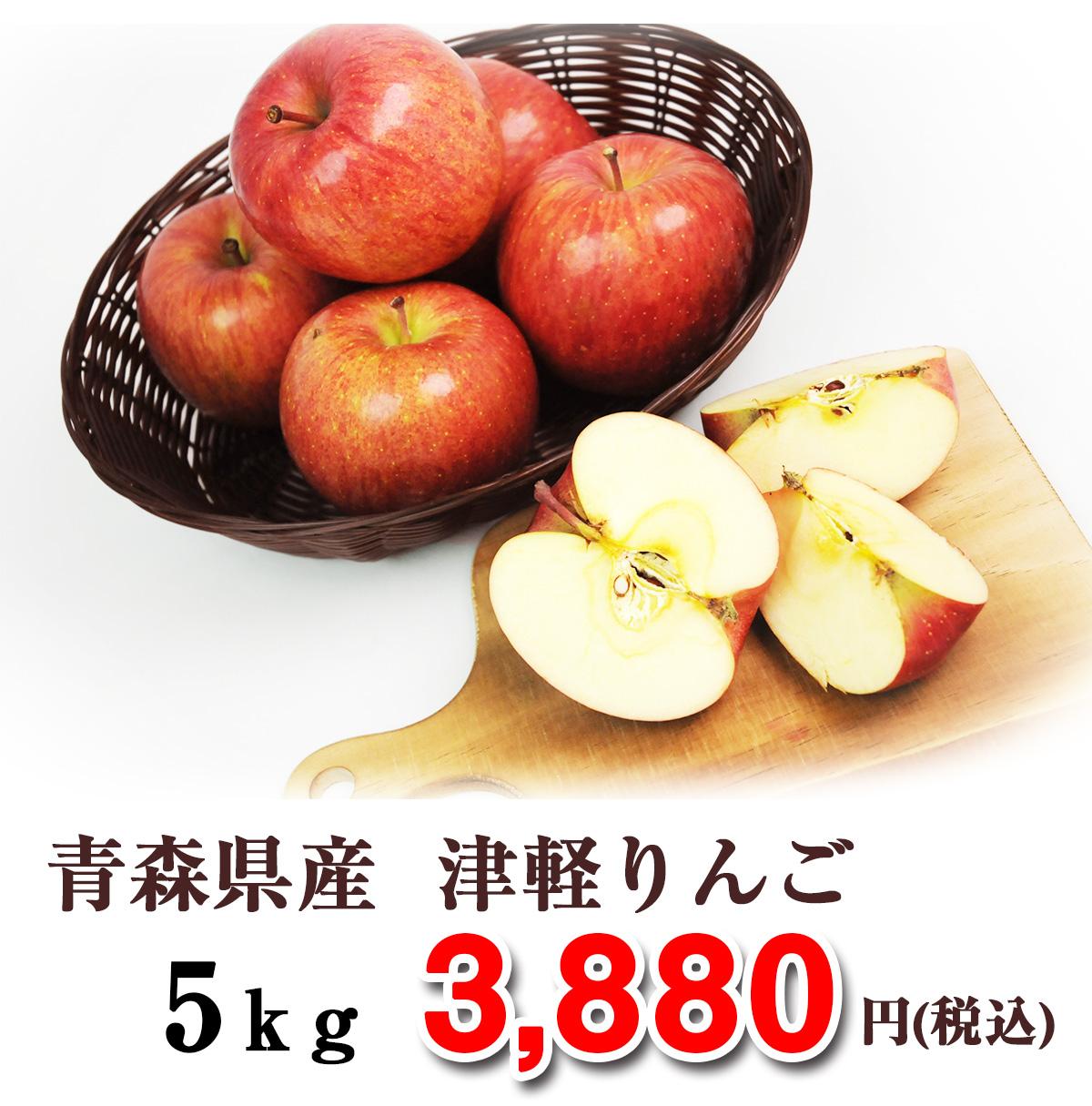 【国産りんご】 訳あり 青森県産りんご 5kg 慣行栽培