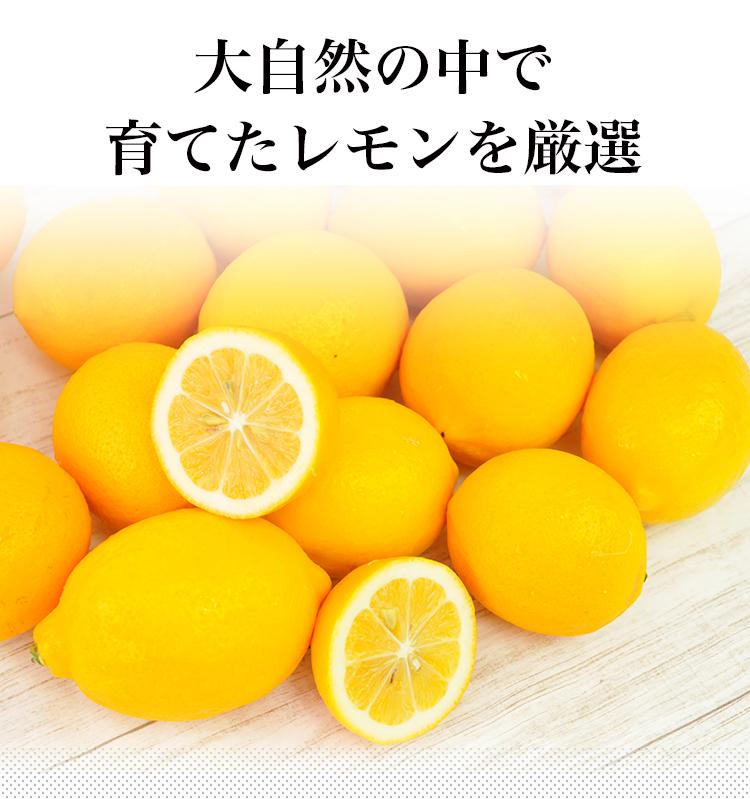 ノンケミカル メイヤーレモン 10個 ニュージーランド産 人参ジュース用 わけあり