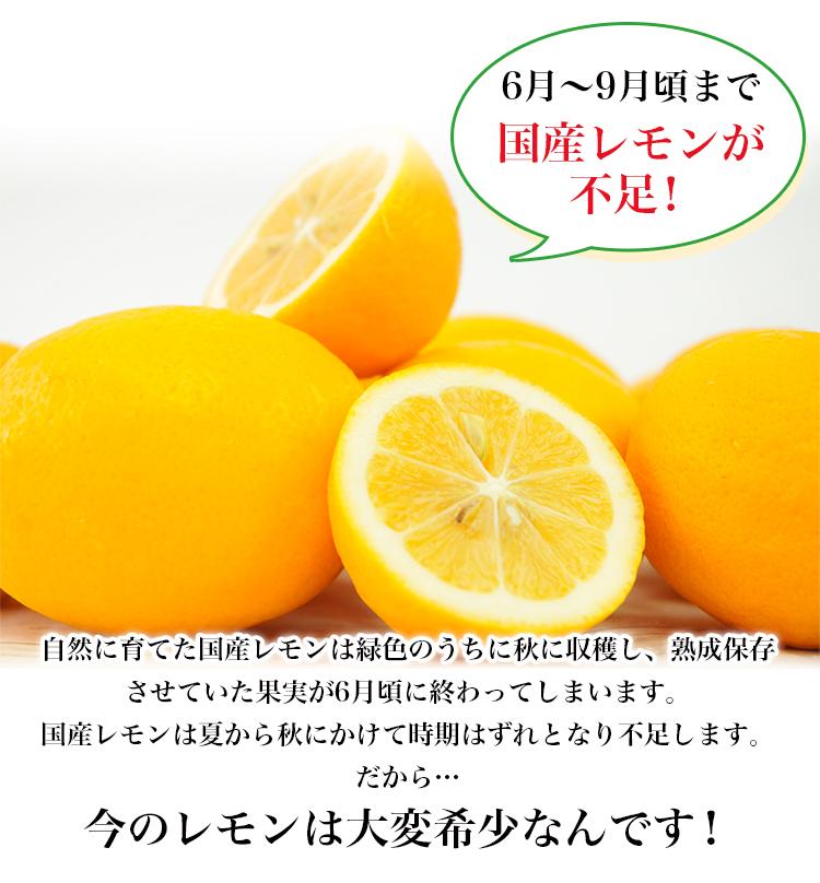 ノンケミカル メイヤーレモン 30個 ニュージーランド産 人参ジュース用 わけあり