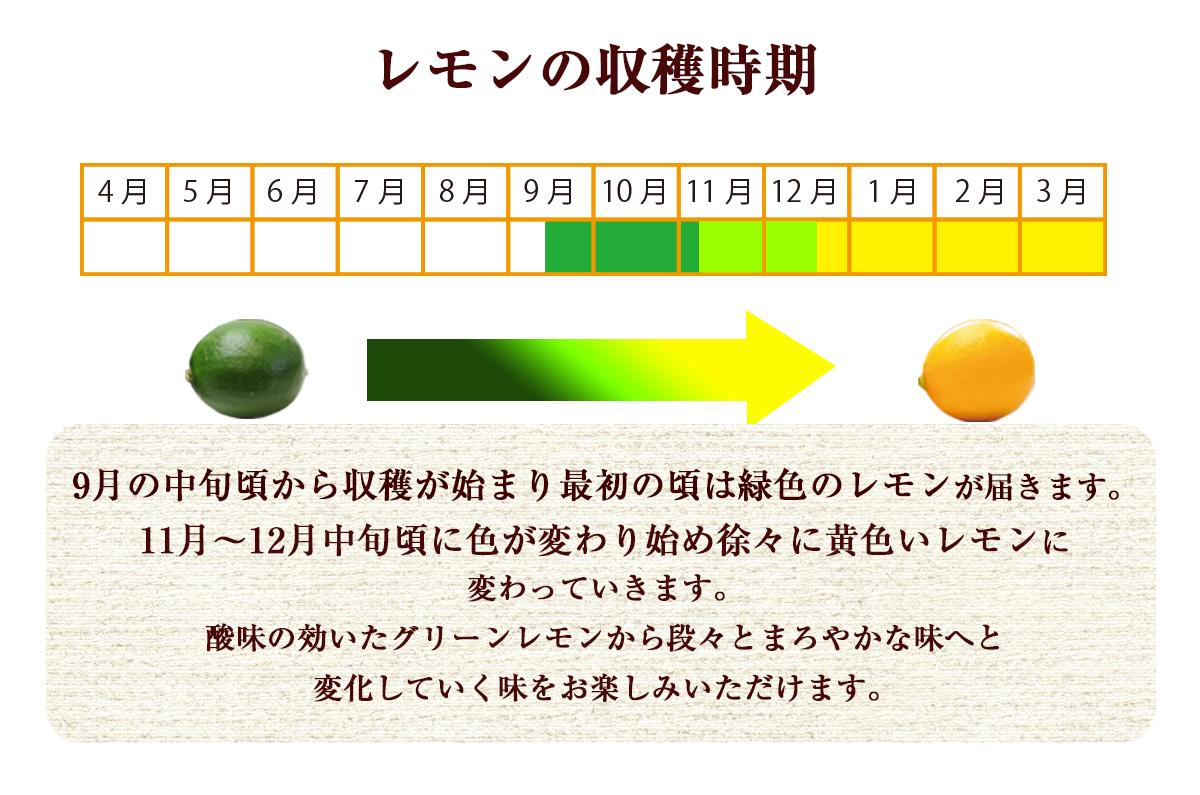 佐賀県産 レモン 2kg 国産 特別栽培農産物