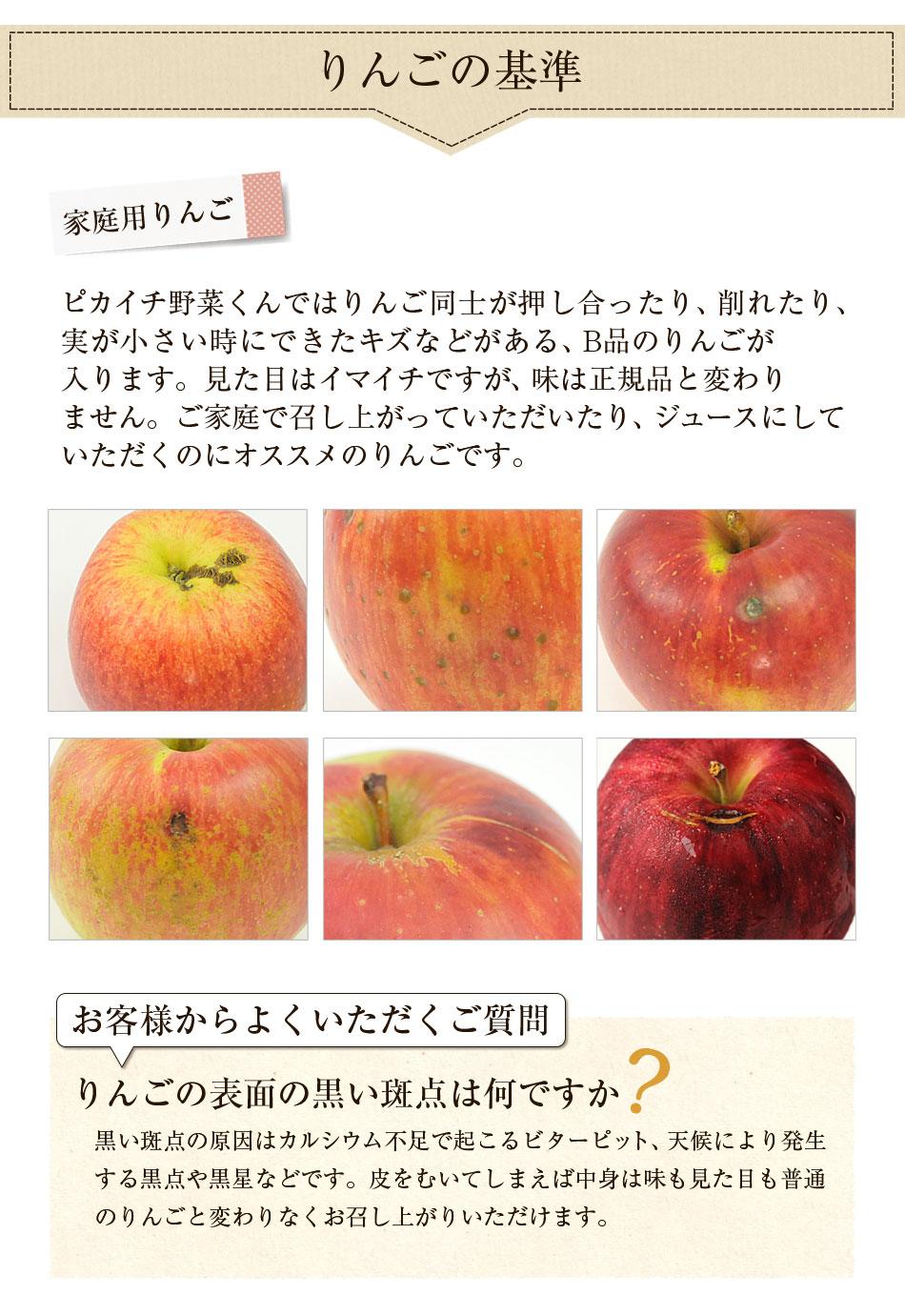 長野県産 りんご 5kg 特別栽培農産物 さみず  国産 訳あり B品 規格外品 林檎