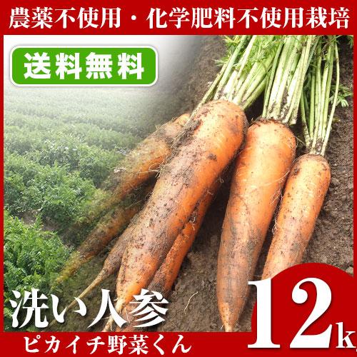 無農薬にんじん 12kg 訳あり B品 規格外 国産 農薬・化学肥料不使用栽培 人参ジュース ゲルソン療法 生酵素 送料無料